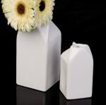 milk-cartons-2a